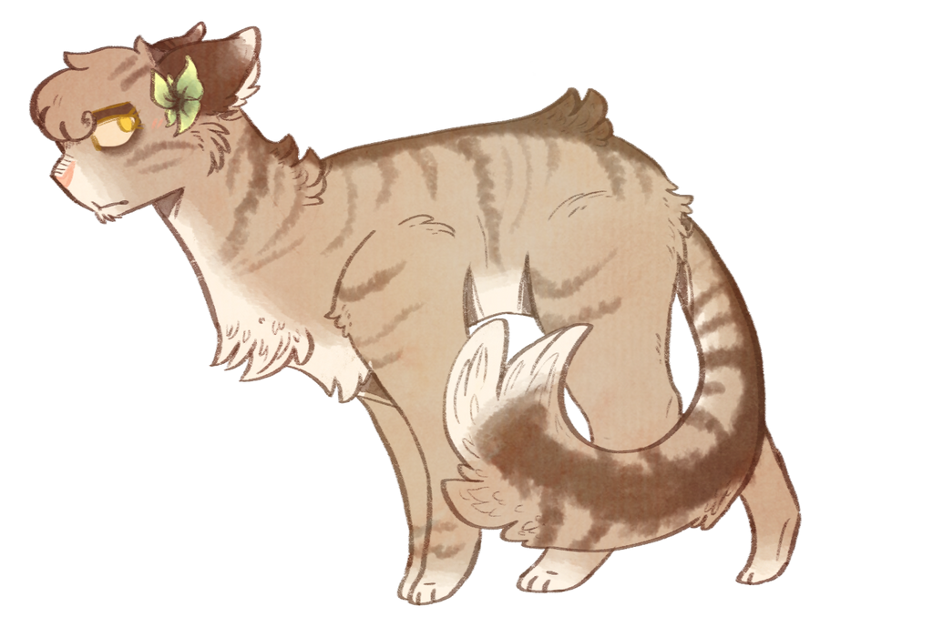 Warrior Cats Guess The Cat
