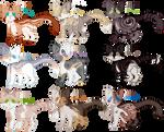 OTA CAT ADOPTS   2