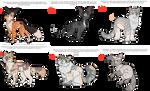 Warrior cat Group Adopts : WTA