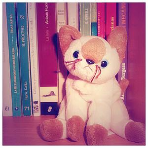 muffinmimi's Profile Picture