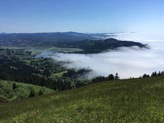 Oregon Coast 27 -of- 29