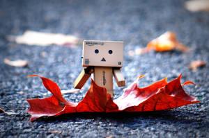 Danbo in Autumn by BeciAnne