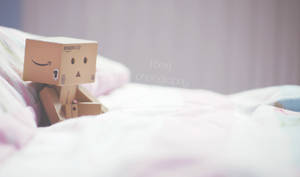 Lazy day danbo