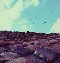 Rugged way by Nour-K