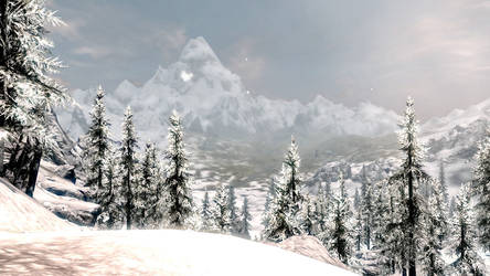 Snowy Mountains and snowy forest