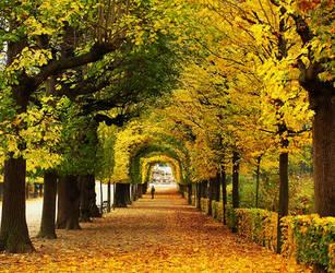 Autumn by Snowflake20