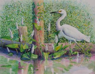 Egret in Bayou Sarah by AinsleyM
