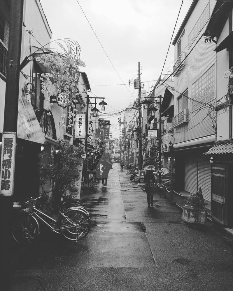 Backstreet of Asakusa