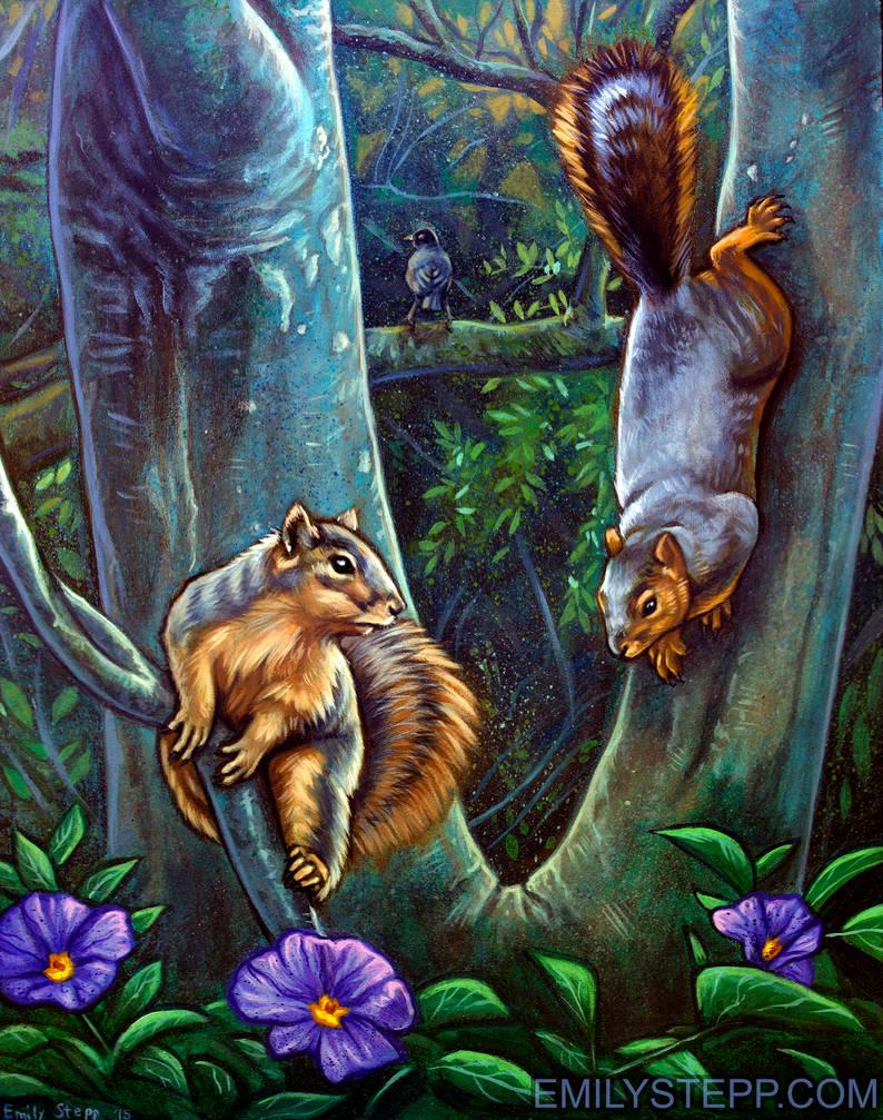 Markham Nature Park Squirrels