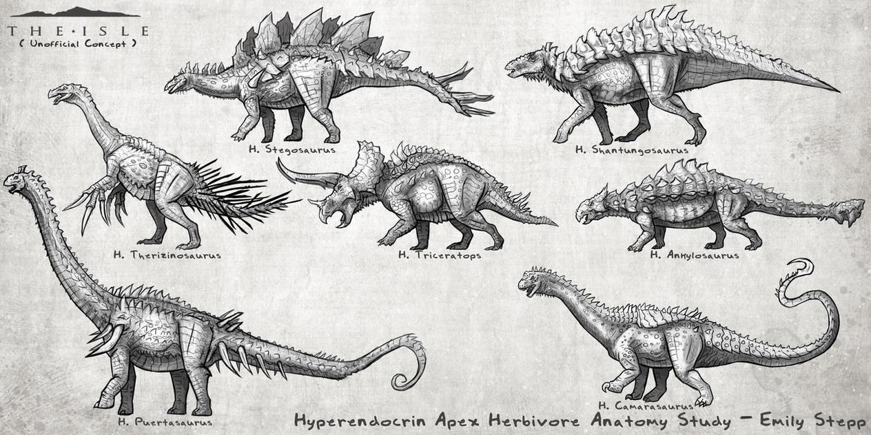 Hyperendocrin Anatomy Studies by EmilyStepp on DeviantArt