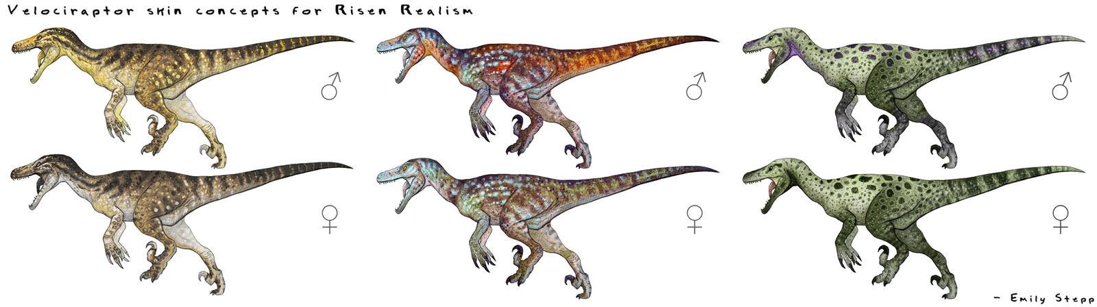 Velociraptor Skin Concepts by EmilyStepp