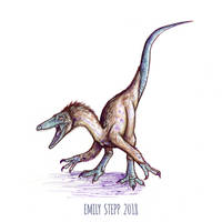 DrawDinovember Day 4 Coelophysis by EmilyStepp