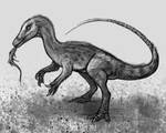 DrawDinovember Day 30 Compsognathus