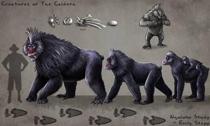 Caldera Ngoloko Study