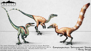 The Isle Feathered Compsognathus Fan Concept