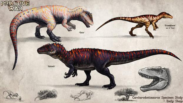 Primitive War Carcharodontosaurus Study
