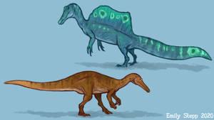 Spinosaurus and Suchomimus Studies