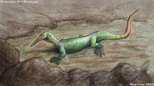 Paleoctober 4 - Mesosaurus