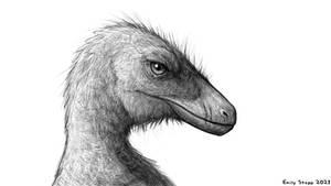 Deinonychus Sketch