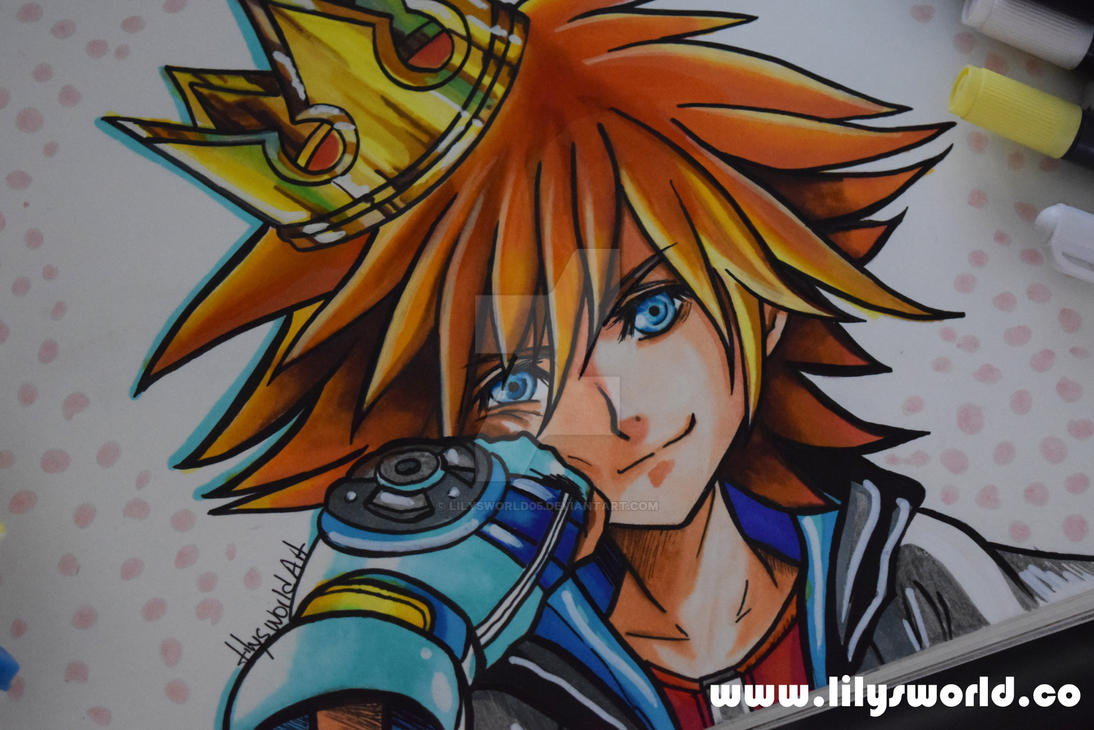 Sora by Lilysworld05