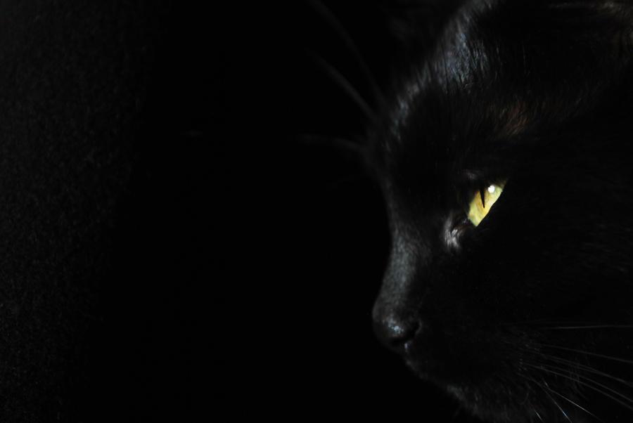 Black by Azraelia