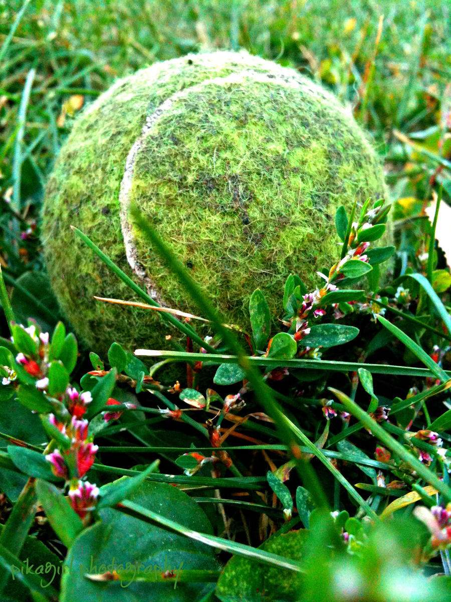 Lonely Tennis Ball by pikagirlgoescrazy