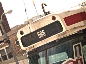 The 506 by HeyMama