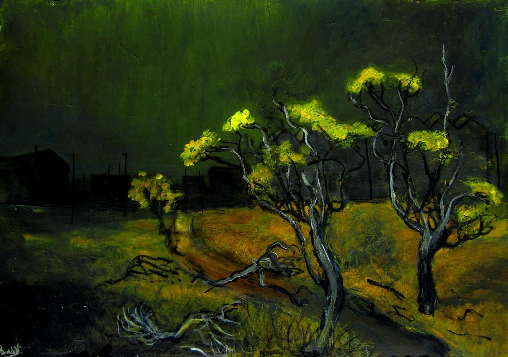 wattle tree's by glenox66