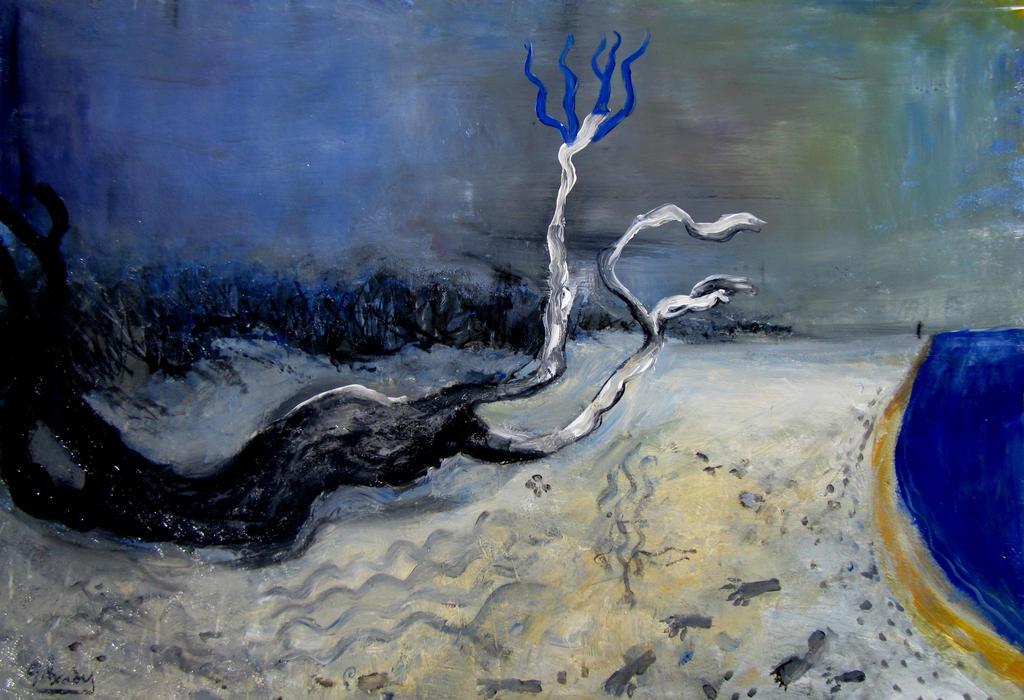 dead tree on the beach by glenox66