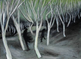 'into The Forest' 90cmx70cm by glenox66
