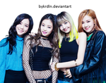 Black Pink PNG [Render]