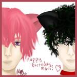 Tenipuri: Happy Birthday Mari