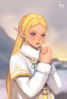 Zelda in winter outfit