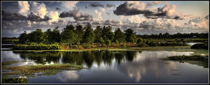 Green Cay Wetlands Panorama by QNetX