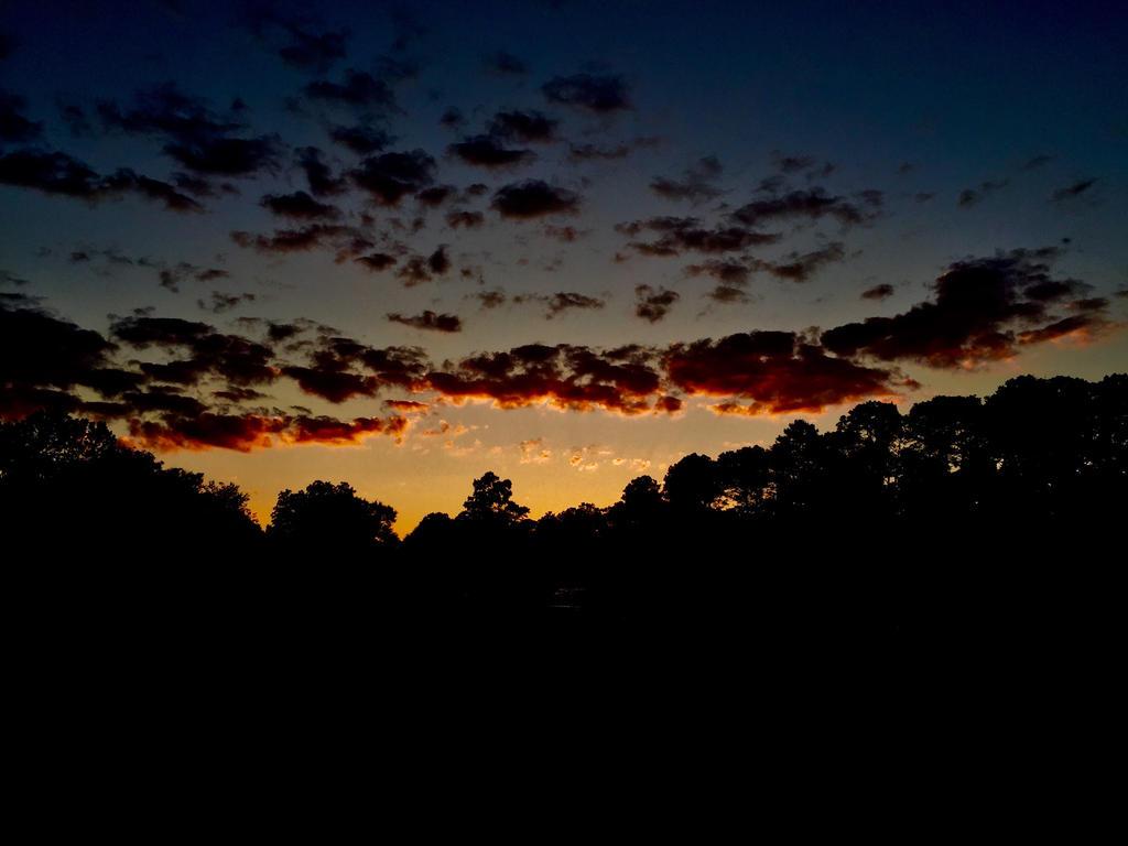 Sky by RealPoison-pen