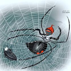 Widow's Silk