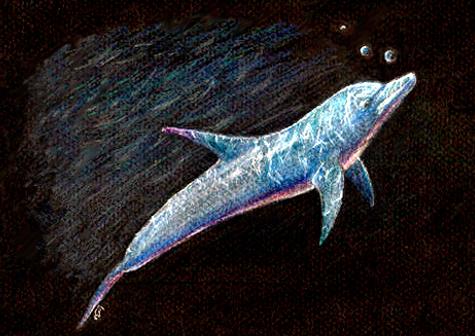 Dolphin by EcaterinaToutok