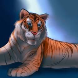 Golden Tiger by BigOx2daBox