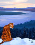 Zodiac: Tiger