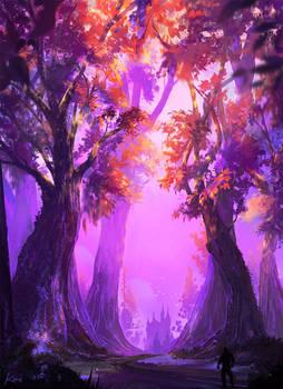 Sunrise Forest