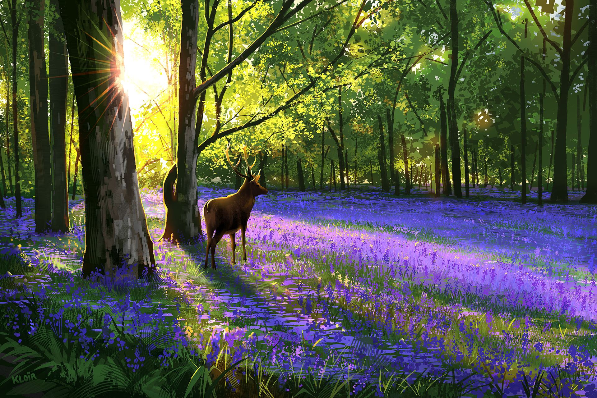 Bluebell Stag