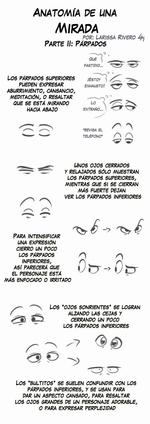 Anatomia de una Mirada - Parpados by LarissaRivero on DeviantArt
