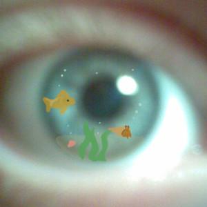 Thegirlwhohadwings's Profile Picture