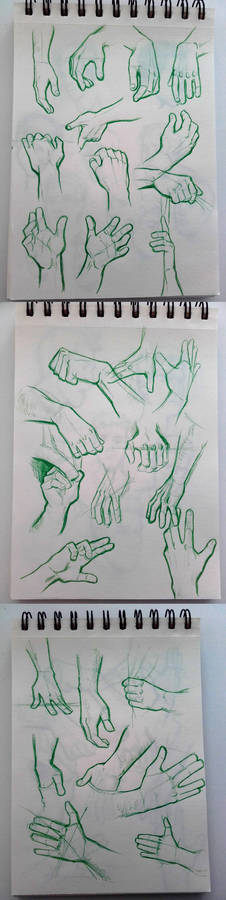 Hand Studies All Together