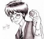 Harry Snitch