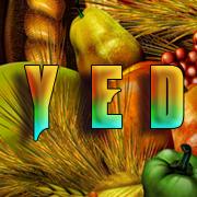 YEDnov by RayanneZ
