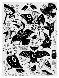 teardrops by parrotte