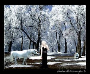 Winter Blossom by Anahita