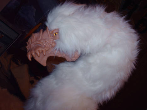 Frost Dragon and his new fur