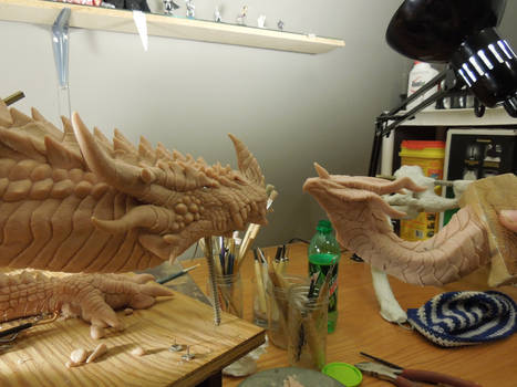 Dragons to Compare